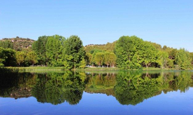 An Oasis of Greenery: Lagunas De Ruidera