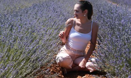 Where to find lavender fields in Spain?