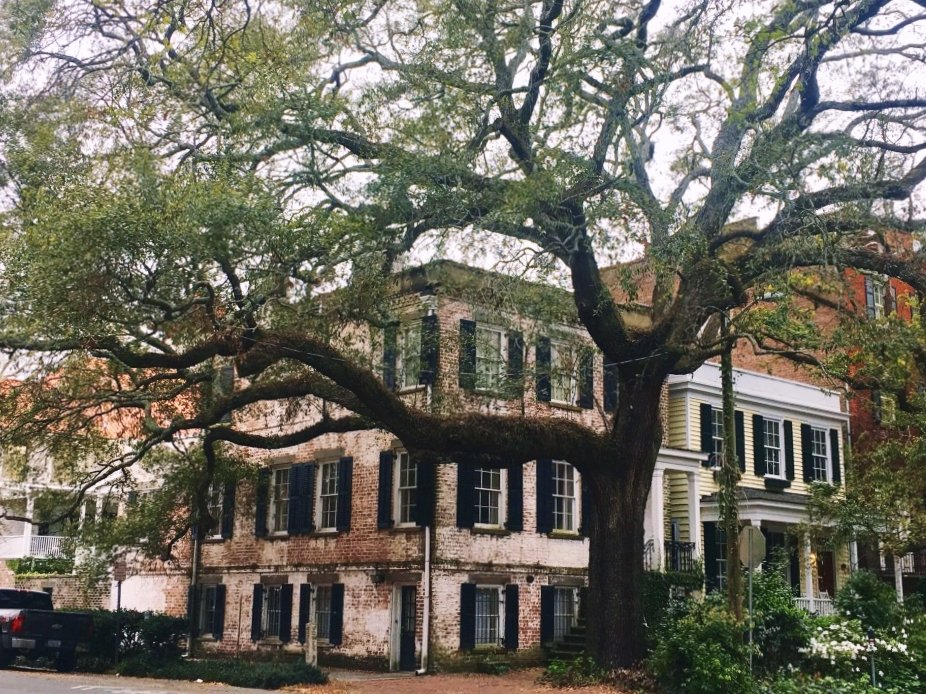 #Savannah or #Charleston ?! Two Southern gems, Savannah in #Georgia and Charleston in #SouthCarolina, have been rivaling for the love of #travelers for over two centuries. Both #cities will strike you with their Southern charm, #goodfood, and #beautiful historic districts. However, if you have time only for one city, which one should you choose? #usa #travel #travelblog