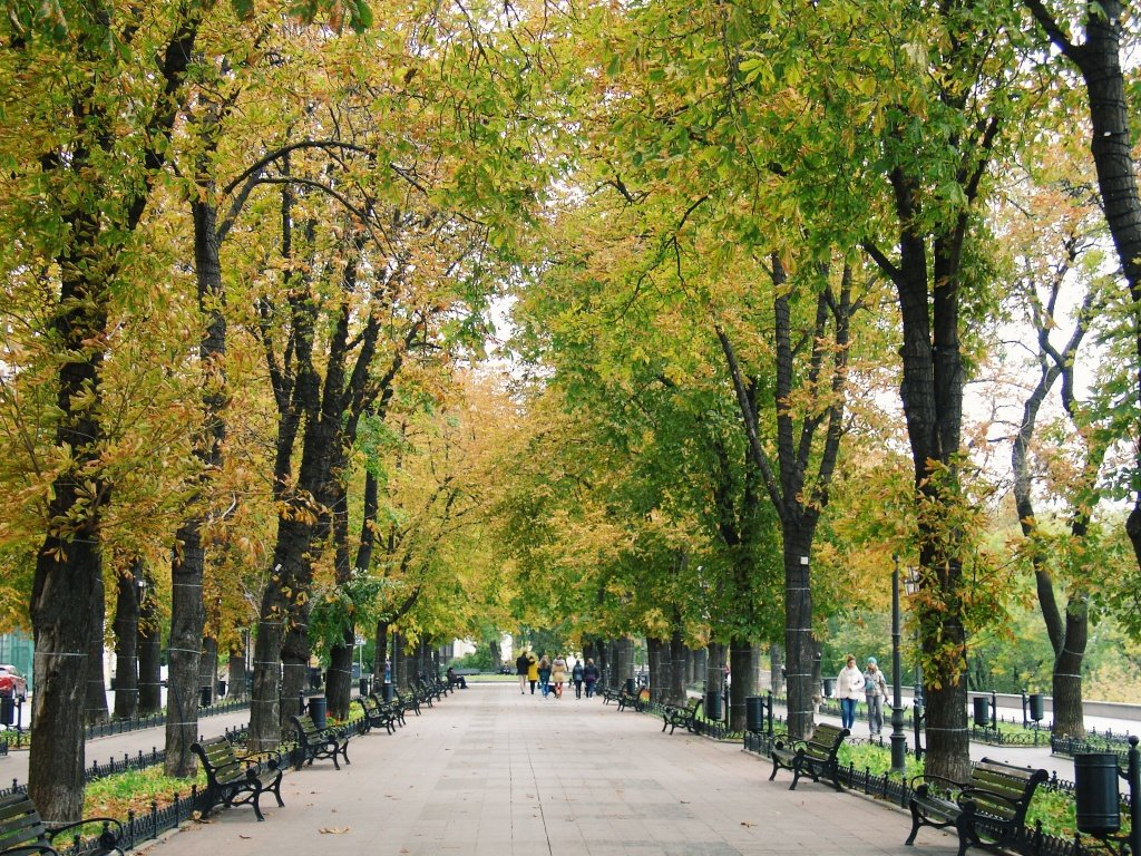 Autumn in Odessa, Ukraine