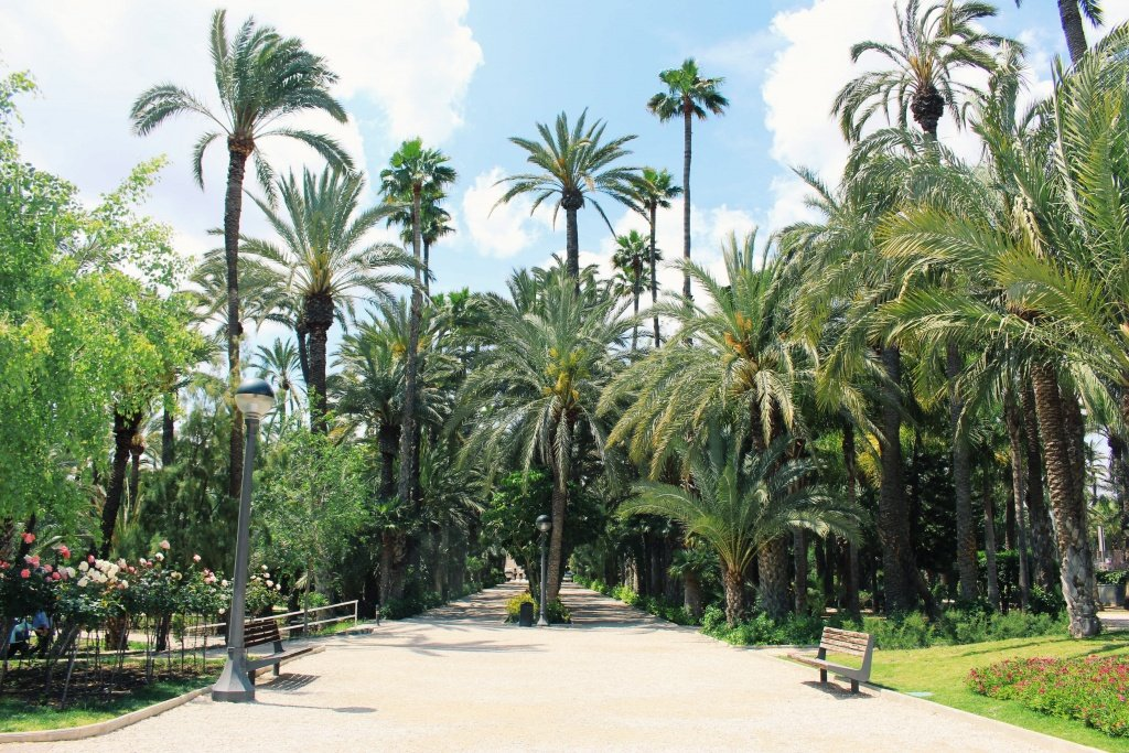 The Town Park of Elche in Valencia, Spain