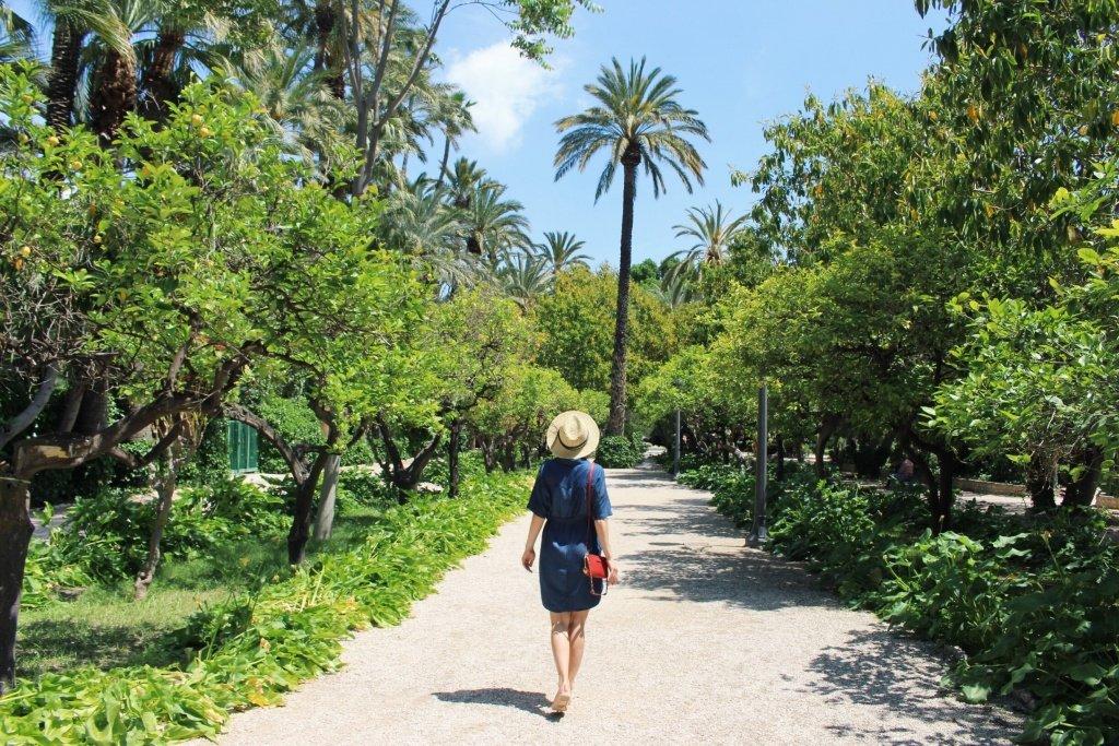 Parque Municipal in Elche, Alicante Province
