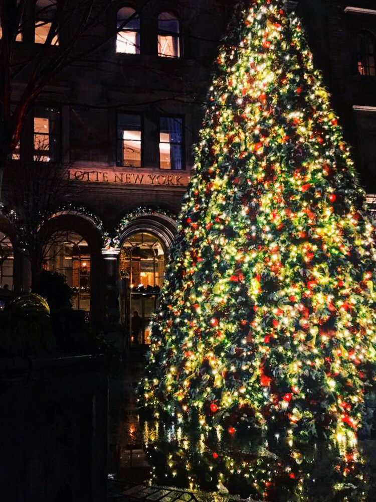 Christmas in New York. The city during a holiday season is something worth experiencing. Everything is colorful and jolly. Stores have bright lights and sparkly decorations. #Christmas #newyork #decoration #winter #holidays #nyc