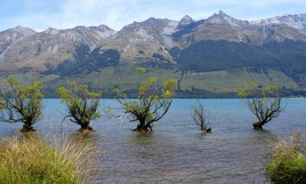 10 amazing experiences for an epic Queenstown holiday