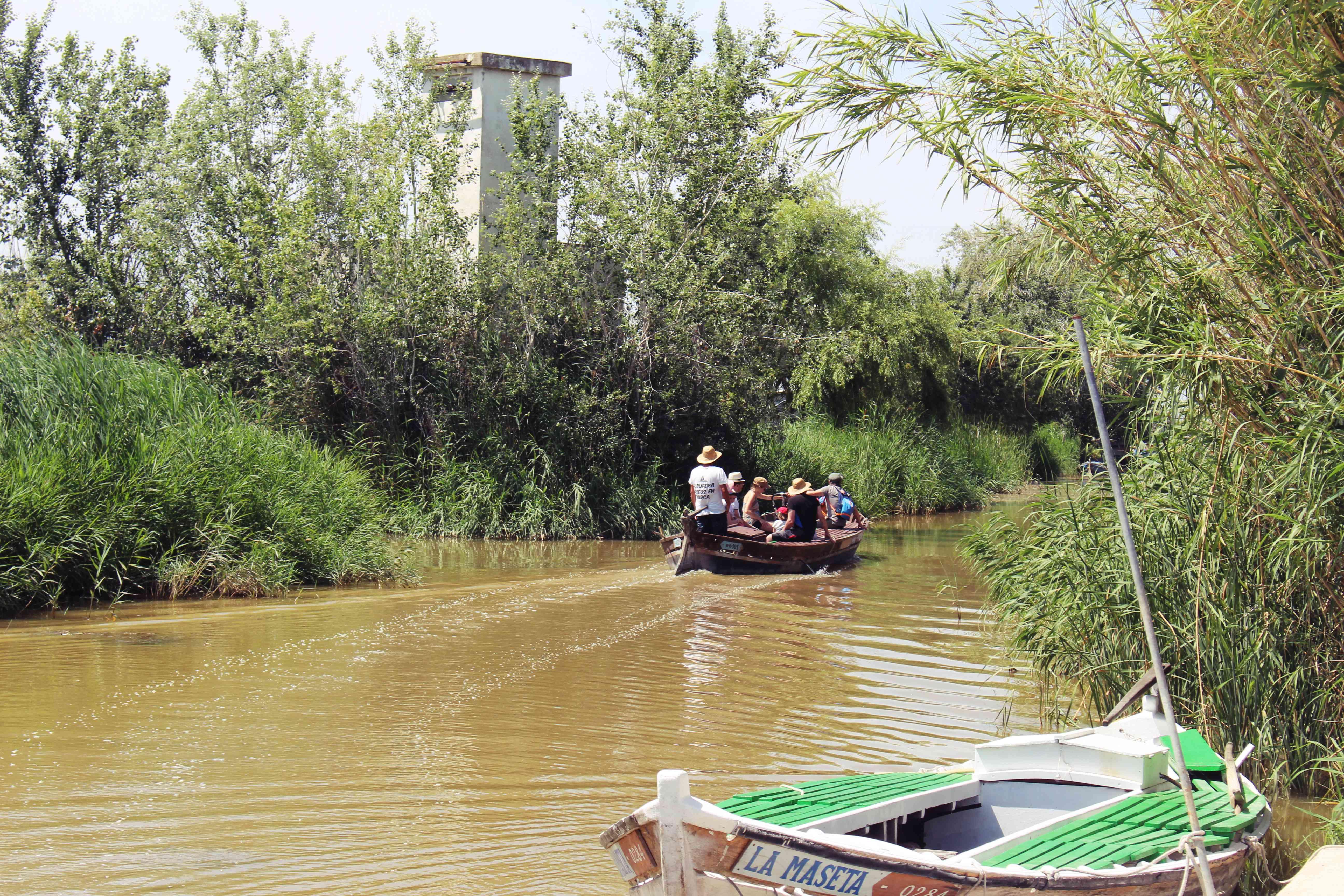 Boat tour in Albufera, near Valencia, Spain