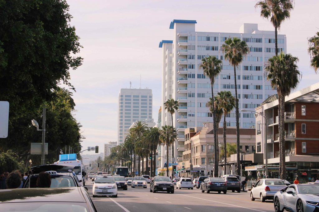 Road, cars and palms in Santa Monica, Los Angeles